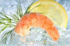 Shrimp on ice with lemon Royalty Free Stock Images