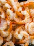 Shrimp on ice Royalty Free Stock Image