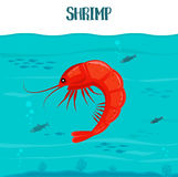 Shrimp icon. Vector illustration. Red shrimp isolated on blue water background. Seafood. Prawn in sea. For restaurant. Shrimp icon. Vector illustration. Red Royalty Free Stock Photo