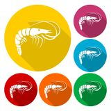 Shrimp icons set with long shadow. Vector icon Stock Photo