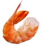 Shrimp isolated. Ona white background Royalty Free Stock Photo