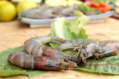 Shrimp and lemon, chilli, lemon grass, kaffir lime leaves for soup spicy Stock Photos