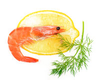 Shrimp, a lemon, fennel Stock Photos