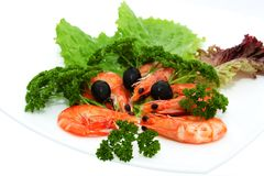 Shrimp with lettuce and black olives Royalty Free Stock Photography