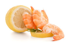 Shrimp with lime Royalty Free Stock Photo