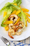 Shrimp and Mango Salad Royalty Free Stock Photo