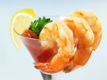 Shrimp Martini Cocktail royalty free stock photography