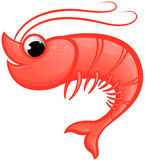 Shrimp Mascot Royalty Free Stock Photo