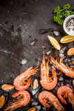 Shrimp and mussels on ice Royalty Free Stock Photography