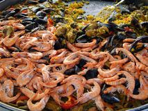Shrimp, mussels and paella Stock Images