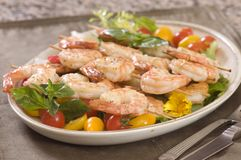 Free Shrimp On A Skewer Royalty Free Stock Photography - 6309827