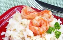 Shrimp and Orzo Stock Photography
