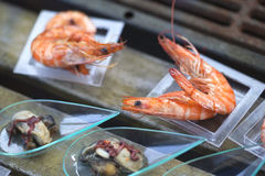 Shrimp and oysters Royalty Free Stock Photo