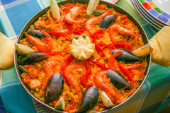 Shrimp Paella from Tenerife. Great and tasty paella made from shrimps and sea food in Tenerife Spain royalty free stock images