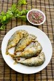 Shrimp Paste Chilli Sauce (Nam Prik Ka Pi) serve with Fried Indi Stock Image