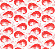 Shrimp. Pattern Royalty Free Stock Image