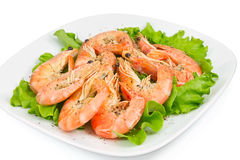 Shrimp with peppers on a green salad Royalty Free Stock Image