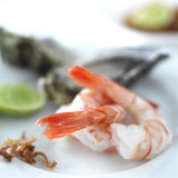 Shrimp or Prawn Cocktail. Isolated on a White Background. Health Stock Images
