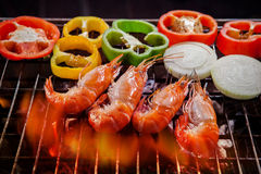 Shrimp,prawn grilled on barbecue stove with chilly and onion rin Stock Photography