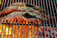 Shrimp, prawn seafood in BBQ Flames Stock Image