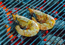 Shrimp, prawn seafood in BBQ Flames Stock Images