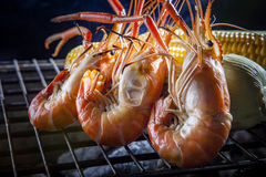 Shrimp ,prawns grilled on barbecue stove with corn behind Stock Image