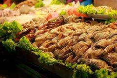 Shrimp Raw stock images