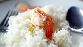 Shrimp and rice Royalty Free Stock Photography