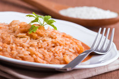 Shrimp risotto. Stock Images