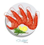 Shrimp with rosemary and lemon on the plate. Vector illustrationin cartoon style. Seafood product design. Inhabitant. Shrimp with rosemary and lemon on the plate Royalty Free Stock Photos