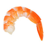 Shrimp's tail. Single prawn tail isolated on white Royalty Free Stock Photography