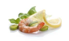 Shrimp's tail Stock Photography