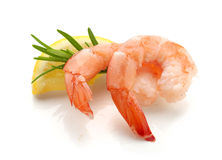 Shrimp's tails Stock Images