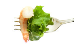 Shrimp and salad Royalty Free Stock Images