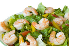 Free Shrimp Salad Stock Image - 15660771