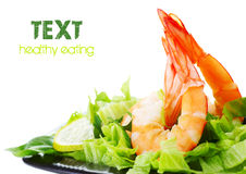 Free Shrimp Salad Royalty Free Stock Image - 19501146