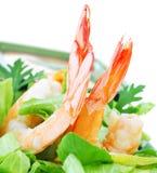 Shrimp salad royalty free stock photos