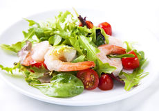 Shrimp salad. In a plate with fresh vegetables stock image