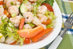 Shrimp salad. Salad made with shrimp, tomatoes, bell peppers, spring onions, lettuce, and cucumbers Stock Photography