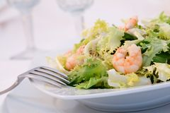 Shrimp salad. In a table with glasses as background royalty free stock image