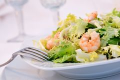 Shrimp salad. In a table stock photos
