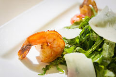 Free Shrimp Salad Royalty Free Stock Images - 47672009