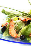 Shrimp salad. Fresh shrimp salad with chive and oil stock photography