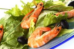 Shrimp salad. Very fresh shrimp salad on blue plate stock images