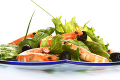 Shrimp salad. Very fresh shrimp salad with oil and chive royalty free stock photos