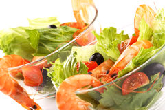 Shrimp salad. Very fresh and tasty shrimp salad with tomatoes royalty free stock photos