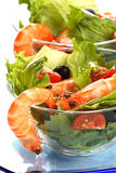 Shrimp salad Stock Image