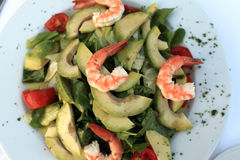 Shrimp salad with avocado Royalty Free Stock Photo