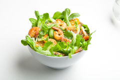 Shrimp salad with cherry tomatoes in bowl. On white background with a glass of water. Copy space Stock Photography