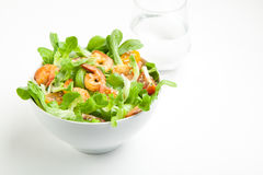 Shrimp salad with cherry tomatoes in bowl. On white background with a glass of water. Copy space Royalty Free Stock Images